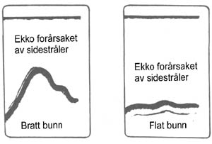 tips-ekko29
