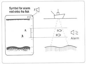 tips-ekko9